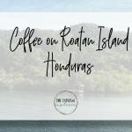 Coffee on Roatan Island