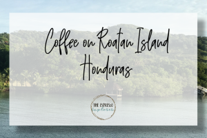 Coffee on Roatan Island